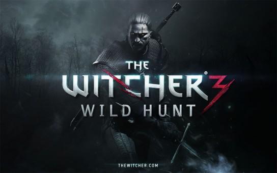 The Witcher 3 Wild Hunt 1